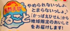 かっぱえびせん 山わさび味-3.jpg