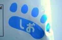 札幌円山動物園 白クマラーメン 塩-9.jpg
